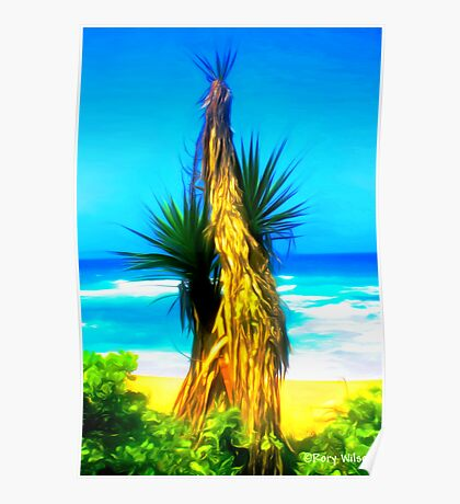 Dune Palm Poster