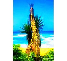 Dune Palm Photographic Print