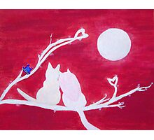 Full-moon Love - Two Loving Cats Photographic Print