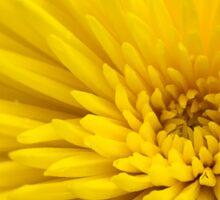 Yellow flower Sticker