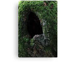 That's A Big Cavity, Cavity, Cavity Canvas Print