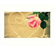 Pink Rose in Walled Garden Art Print