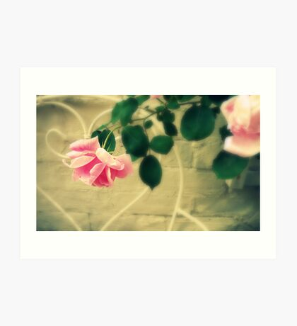 Pink Roses in Walled Garden Art Print