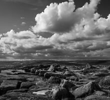 Edge Horizon by Angie Morton