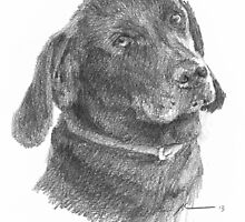 Black lab drawing by Mike Theuer