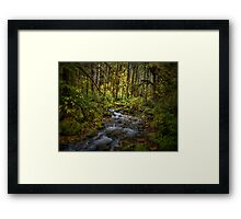 And There Was Peace ~ Brice Creek ~ Framed Print