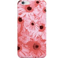 Gerbera Flowers, Petals, Blossoms - Pink iPhone Case/Skin
