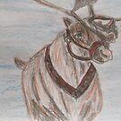 Reindeer by GEORGE SANDERSON