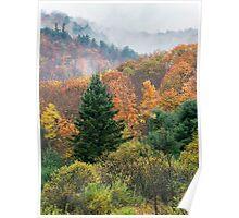 Autumn colours-2 Poster