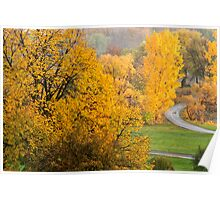 Autumn colours-5 Poster
