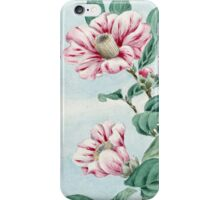Camellia Flowers, Petals, Leaves - Pink Green iPhone Case/Skin