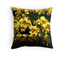 Daffodils and Sunshine Throw Pillow