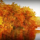 Rust and Orange Autumn by Ginger  Barritt