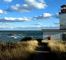 West Quaco Lighthouse & The Bay of Fundy by Kathleen M. Daley