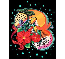 Holly Gecko Photographic Print