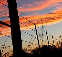 Sunset Fenceline 2 by AbigailJoy