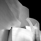 Disney Concert Hall by fernblacker