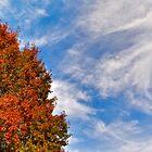 Autumn Sky by Cee Neuner