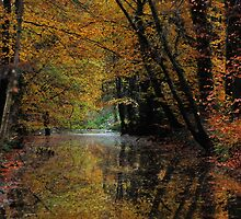 Autumnal reflections by jchanders