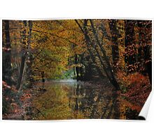 Autumnal reflections Poster