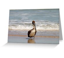Pelican 2 Artistic Photograph by Shannon Sears Greeting Card