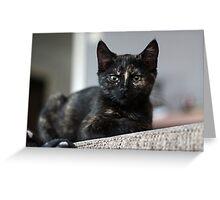 Nebula the tortie cat #1 Greeting Card