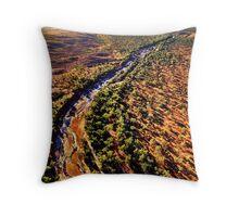 Pilbara River  Throw Pillow