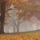 Autumn Fog 3 by elasita