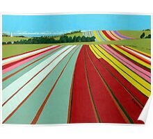 Colour fields, Table Cape Poster