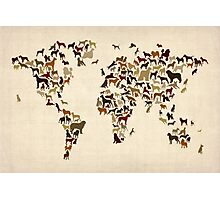 Dogs Map of the World Map Photographic Print