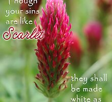 Crimson Clover Sins Are Like Scarlet by paws4critters