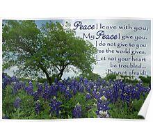 Texas Bluebonnets Peace Poster