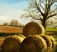 Bales Of Hay by StephenRphoto