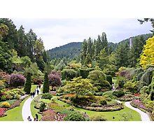 Sunken Garden Photographic Print