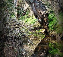 Spring Delights by Lozzar Landscape
