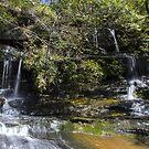 Flat Rock beach Waterfall by Doug Cliff