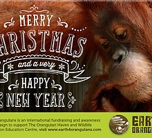 Earth 4 Orangutans Christmas Card - 2 by Raw Wildlife Encounters