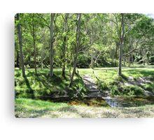 GLENWORTH VALLEY TREES Canvas Print