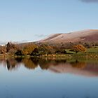 Pendle View  by Irene  Burdell