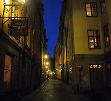 Night Time in a Stockholm Alleyway (1) by Larry Lingard-Davis
