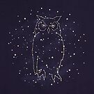 Owl Constellation  by Terry  Fan