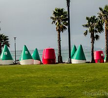 The Bouys by Leonie Morris