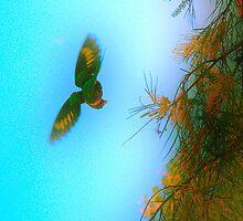 bird in flight by Elisabeth Dubois