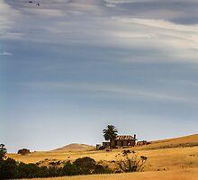 Hilltop Ruin by Maria  Bastin