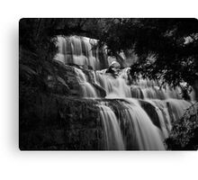 A Different Look Canvas Print
