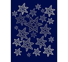 Snowflakes are falling at night. Photographic Print
