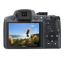 View Review of Nikon Coolpix P510 by meniok