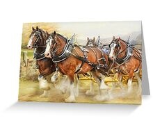 Clydesdales in Harness Greeting Card