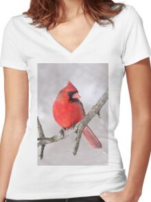 Northern Cardinal Women's Fitted V-Neck T-Shirt
