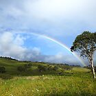 Under The Rainbow by janewiebenga